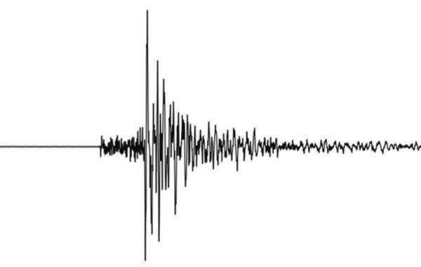 Die meisten Erdbebentypen sind anhand des Seismogramms kaum zu unterscheiden